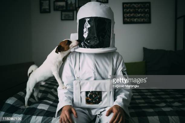 pet dog licking astronaut on bed - eccentric stock pictures, royalty-free photos & images