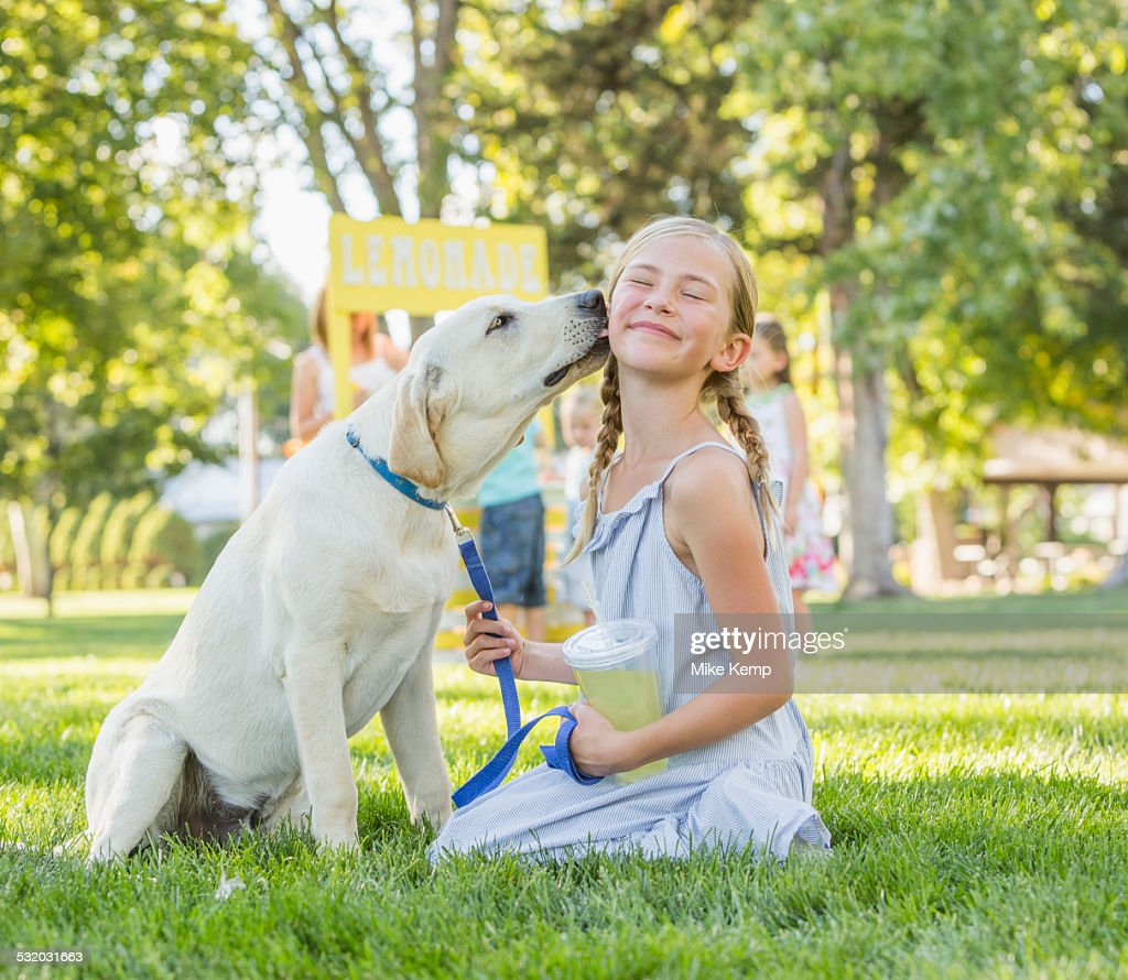 Pet dog licking face of Caucasian girl on grassy lawn : Stock Photo