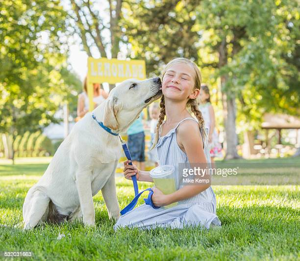 pet dog licking face of caucasian girl on grassy lawn - girls licking girls stock pictures, royalty-free photos & images