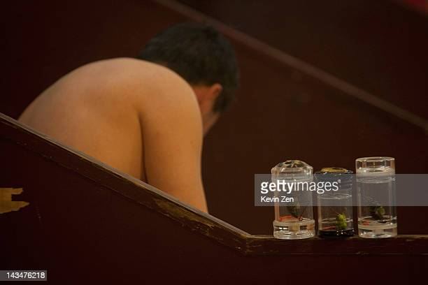 Pet grasshoppers are kept in jars as customers rest after bathing at Shuangxing Tang Bathhouse on December 8 2011 in Beijing China The Shuangxing...
