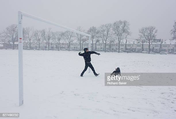 A pet owner is about to throw a yellow tennis ball for his Alsatian dog during a snowy day in south London park During a prolonged cold spell of bad...