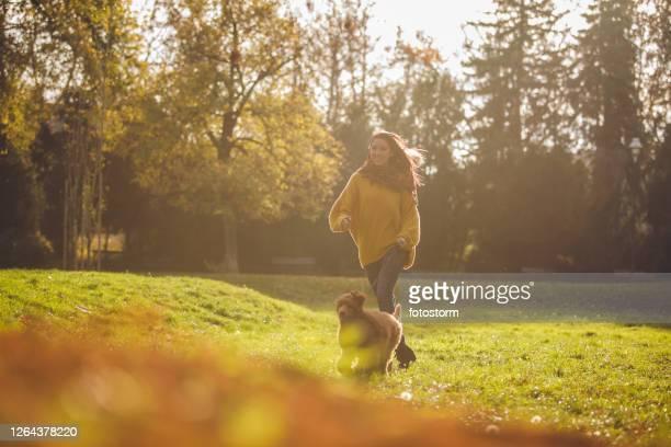 公園で彼女の赤い標準プードルで走っているペットの所有者 - 接近する 女性 ストックフォトと画像