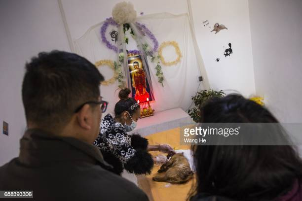Pet owners attend a funeral for their pet dog Xiaoxiao who died at the age of 6 months at Wangzai pet cemetery on March 27 2017 in Wuhan Hubei...