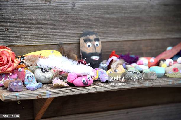 Pet Rock Daycare at Digital Detox Analog Zone during day 2 of the 2014 Outside Lands Music and Arts Festival at Golden Gate Park on August 9 2014 in...