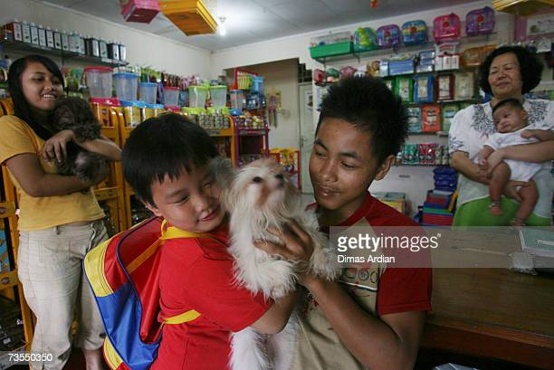 A pet shop owner holds her grandson her staff holds a dog on sale while her grandson and other shop staff hold a dog at a pet shop March 12 2007 in...