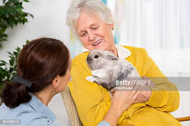 Soins pour animaux de compagnie-femme Senior avec lapin à la maison