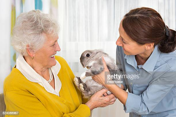 Pet Therapy – Senior woman with rabbit