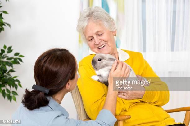 Soins pour animaux de compagnie-Femme âgée avec lapin