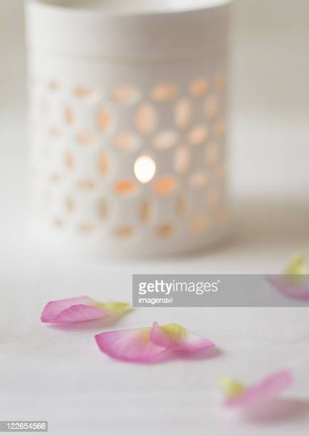Petals and aromatherapy burner