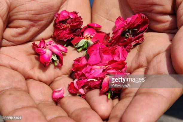 Petals dropped by the Indian Air Force over the All India Institute of Medical Sciences and the Safdarjung Hospital showering on May 3, 2020 in New...