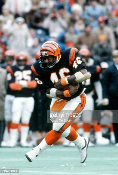 Pete Johnson of the Cincinnati Bengals carries the all against the San Francisco 49ers during an NFL football game December 6 1981 at Riverfront...