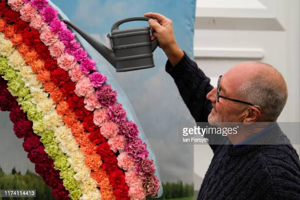 Peter Booker from North Lincolnshire waters a display of Carnations during staging day for the Harrogate Autumn Flower Show on September 12 2019 in...