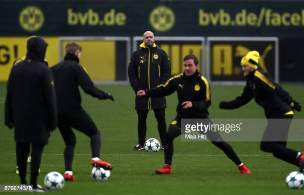 Peter Bosz head coach of Borussia Dortmund looks on during a training session ahead of the champions League Group H match between Borussia Dortmund...