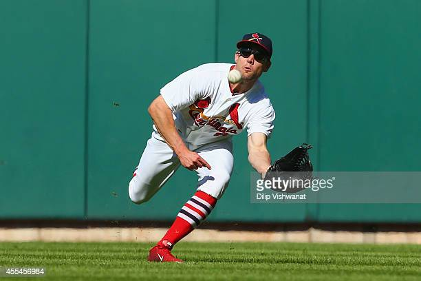 Peter Bourjos of the St Louis Cardinals makes a catch in the seventh inning against the Colorado Rockies at Busch Stadium on September 14 2014 in St...
