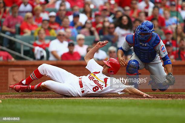 Peter Bourjos of the St Louis Cardinals scores a run against Welington Castillo of the Chicago Cubs in the fourth inning at Busch Stadium on April 13...
