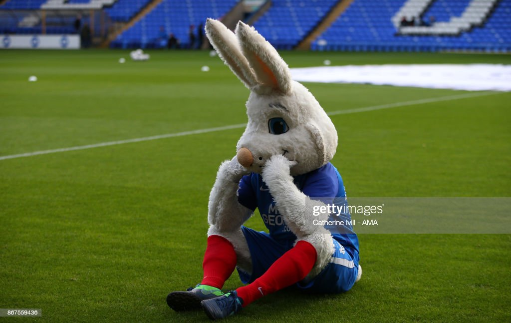 Peter Burrow - mascot of Peterborough United during the Sky Bet League One match between Peterborough United and Shrewsbury Town at ABAX Stadium on October 28, 2017 in Peterborough, England.