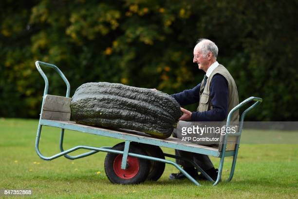Peter Glazebrook poses for a photograph with his 66.8 kg marrow which won its class in the giant vegetable competition on the first day of the...
