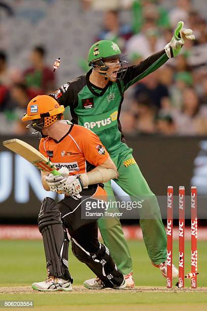 Peter Handscomb of the Melbourne Stars appeals for a stumping of Michael Klinger of the Perth Scorchers during the Big Bash League Semi Final match...
