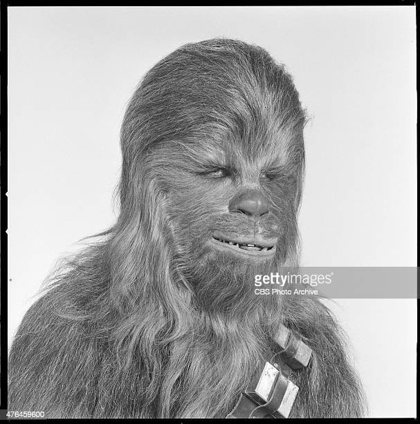 Peter Mayhew . Image dated August 23, 1978.