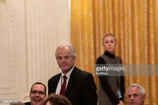 Peter Navarro director of the National Trade Council attends the Presidential Medal of Freedom ceremony in the East Room of the White House in...