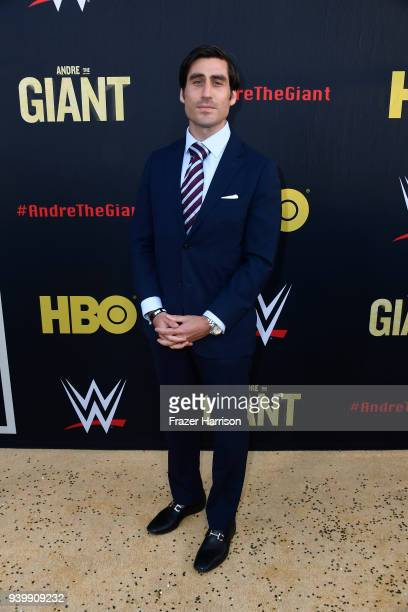 Peter Nelson attends the Premiere Of HBO's Andre The Giant at The Cinerama Dome on March 29 2018 in Los Angeles California