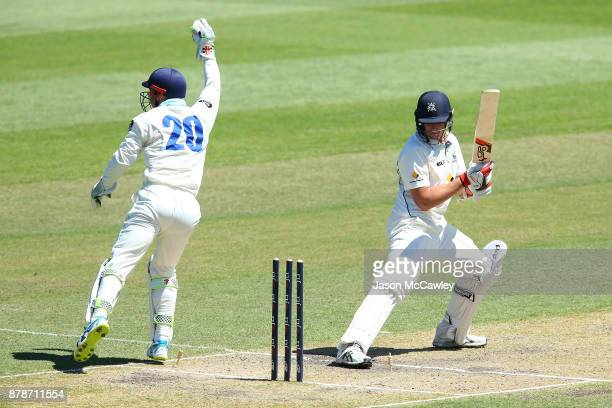 Peter Nevill of NSW appeals the wicket of Chris Tremain of Victoria during day two of the Sheffield Shield match between New South Wales and Victoria...