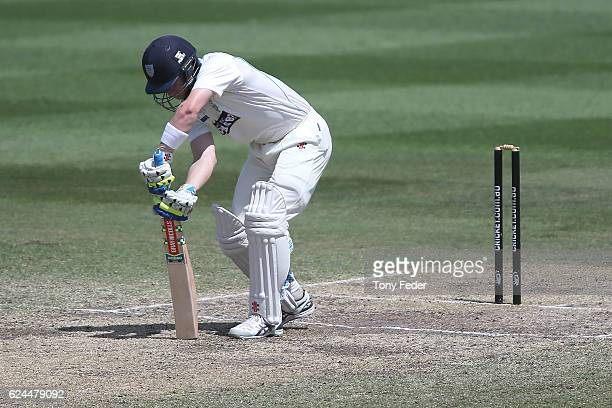 Peter Nevill of NSW is bowled during day four of the Sheffield Shield match between New South Wales and Victoria at Sydney Cricket Ground on November...
