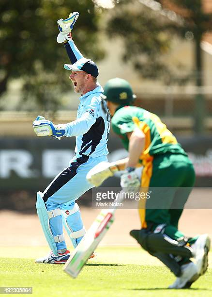 Peter Nevill of the Blues appeals for a run out during the Matador BBQs One Day Cup match between Tasmania and New South Wales at Hurstville Oval on...