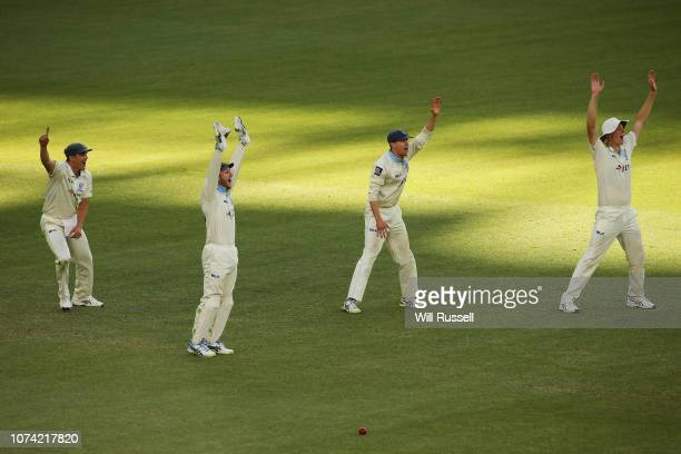 Peter Nevill of the Blues appeals for LBW during Day three of the Sheffield Shield match between Western Australia and New South Wales at Perth...