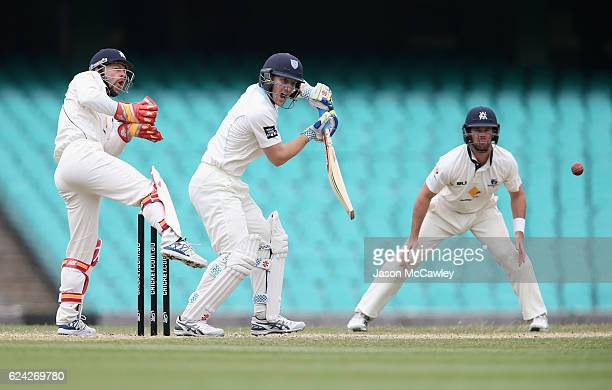 Peter Nevill of the Blues bats during day three of the Sheffield Shield match between New South Wales and Victoria at Sydney Cricket Ground on...