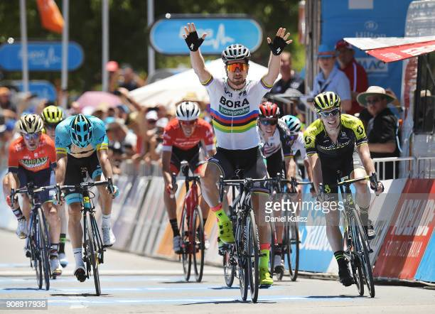 Peter Sagan of Slovakia and BoraHansgrohe celebrates after crossing the finish line to win stage four of the 2018 Tour Down Under on January 19 2018...