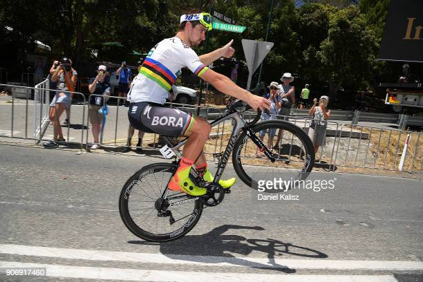 Peter Sagan of Slovakia and BoraHansgrohe celebrates after winning stage four of the 2018 Tour Down Under on January 19 2018 in Adelaide Australia