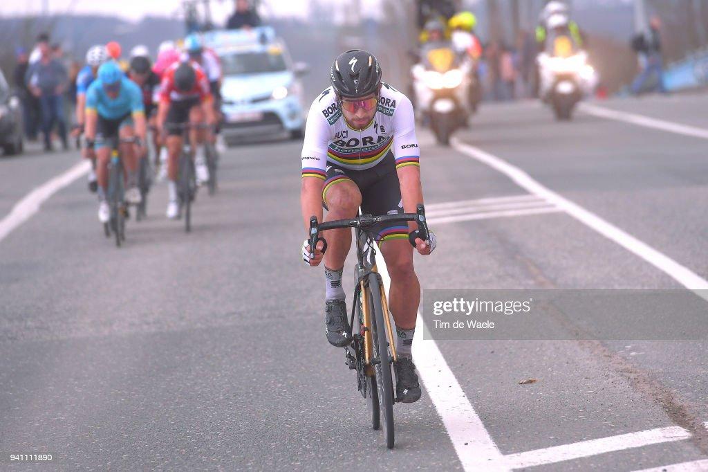 Peter Sagan of Slovakia and Team Bora - Hansgrohe / during the 102nd Tour of Flanders 2018 - Ronde Van Vlaanderen a 264,7km race from Antwerpen to Oudenaarde on April 1, 2018 in Oudenaarde, Belgium.