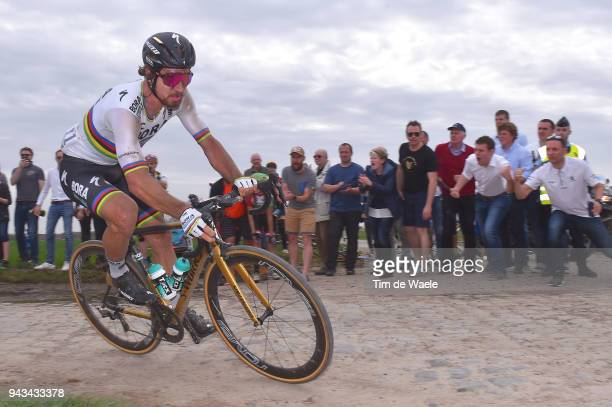 Peter Sagan of Slovakia and Team Bora - Hansgrohe / during the 116th Paris to Roubaix 2018 a 257km race from Compiegne to Roubaix on April 8, 2018 in...