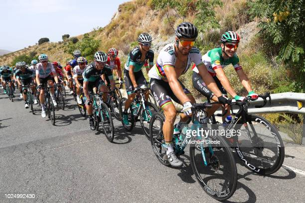 Peter Sagan of Slovakia and Team Bora Hansgrohe / Elia Viviani of Italy and Team QuickStep Floors / during the 73rd Tour of Spain 2018 Stage 5 a...