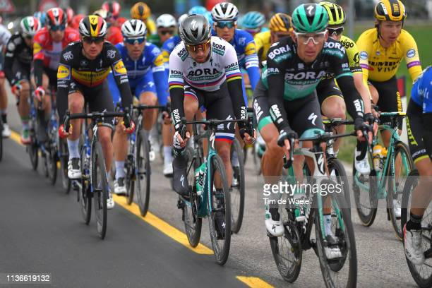 Peter Sagan of Slovakia and Team Bora - Hansgrohe / Peloton / during the 54th Tirreno-Adriatico 2019, Stage 6 a 195km stage from Matelica to Jesi 92m...