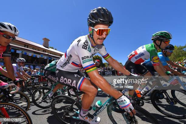 Peter Sagan of Slovakia and Team Bora-Hansgrohe / during the 21st Santos Tour Down Under 2019, Stage 6 a 151,5km stage from McLaren Vale to Willunga...