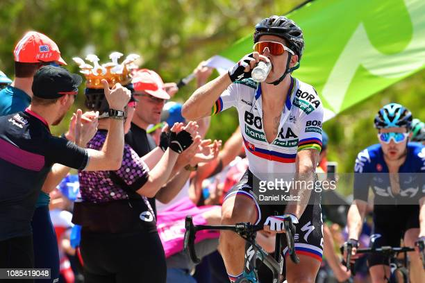 Peter Sagan of Slovakia and Team Bora-Hansgrohe has a drink during the 21st Santos Tour Down Under 2019, Stage 6 a 151,5km stage from McLaren Vale to...