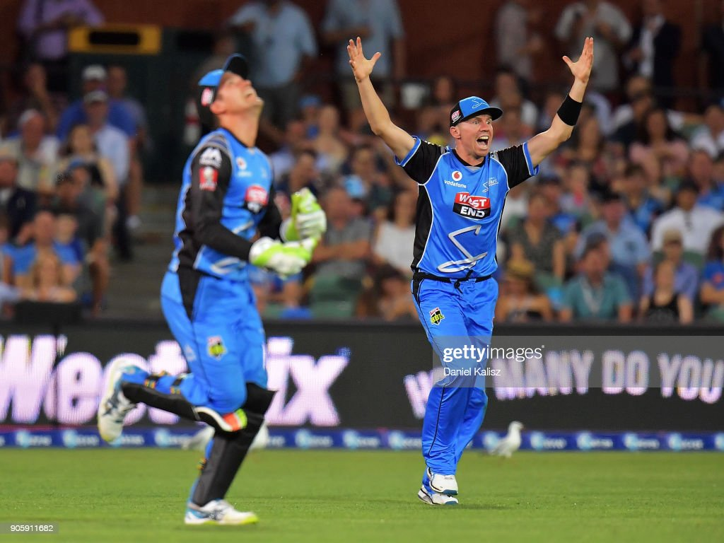 Peter Siddle of the Adelaide Strikers celebrates during the Big Bash League match between the Adelaide Strikers and the Hobart Hurricanes at Adelaide Oval on January 17, 2018 in Adelaide, Australia.