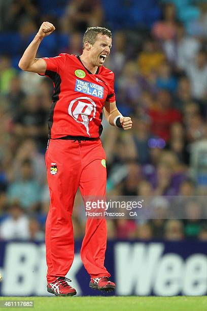 Peter Siddle of the Renegades celebrates after taking the wicket of Jonathan Wells of the Hurricanes during the Big Bash League match between the...