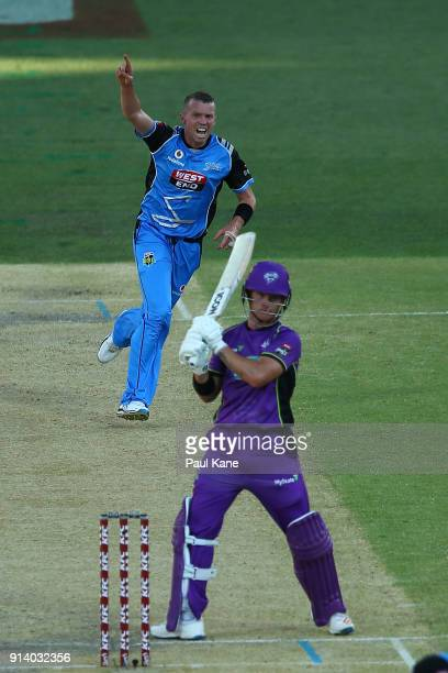 Peter Siddle of the Strikers celebrates the wicket of DÕArcy Short of the Hurricanes during the Big Bash League Final match between the Adelaide...