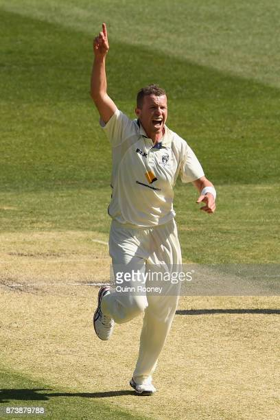 Peter Siddle of Victoria celebrates getting the wicket of Jake Doran of Tasmania during day two of the Sheffield Shield match between Victoria and...