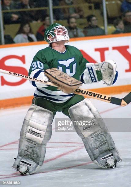 Peter Sidorkiewicz of the Hartford Whalers skates against the Toronto Maple Leafs during NHL game action on February 15 1989 at Maple Leaf Gardens in...