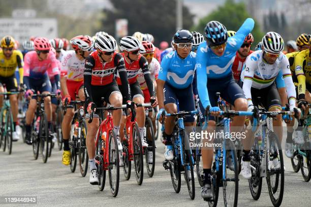 Peter Stetina of The United States and Team Trek Segafredo / Nairo Quintana of Colombia and Movistar Team / Andrey Amador of Costa Rica and Movistar...