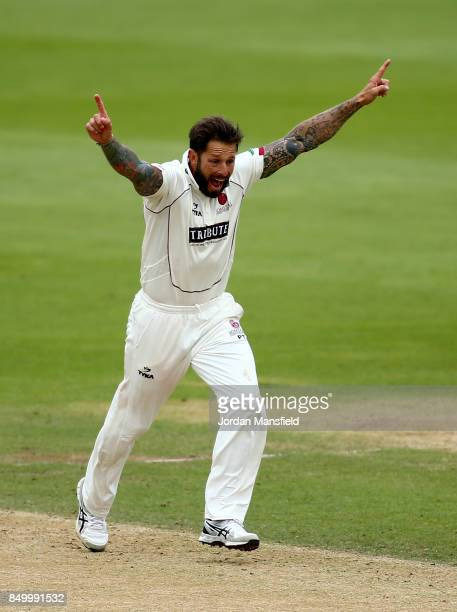 Peter Trego of Somerset celebrates dismissing Rory Burns of Surrey during day two of the Specsavers County Championship Division One match between...