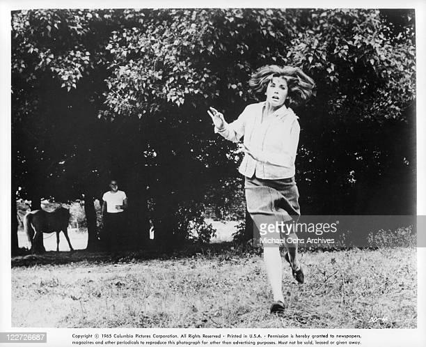 Peter Vaughan watching Stefanie Powers run away in a scene from the film 'Die Die My Darling' 1965