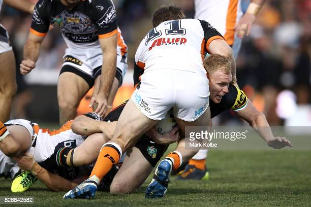 Peter Wallace of the Panthers is tackled by Chris Lawrence of the Tigers during the round 22 NRL match between the Penrith Panthers and the Wests...