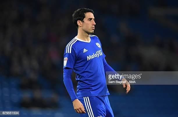 Peter Whittingham of Cardiff City during the Sky Bet Championship match between Cardiff City and Wolverhampton Wanderers at Cardiff City Stadium on...