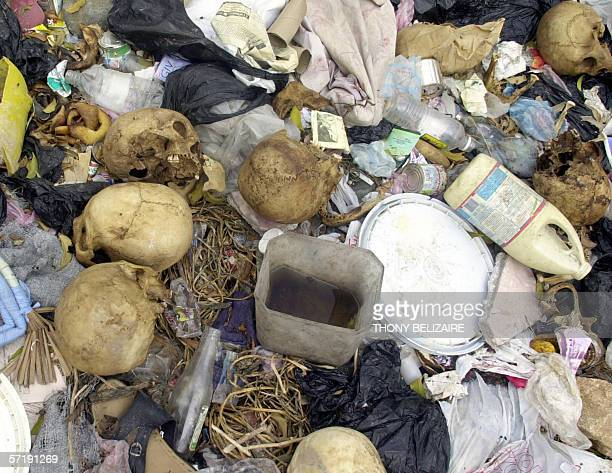 This 27 March 2006 photo shows human skulls found several days ago in an uninhabited area in Petionville used as a trash dump Seventeen human skulls...