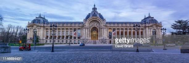 petit palais - briard stock photos and pictures